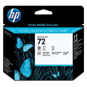 HP 72 Grey / Photo Black Printhead